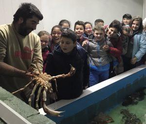 Visita escolar á Cetaria da Balandra